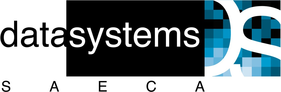 Data Systems logo